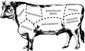 cow_butcherchartjpg