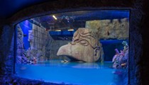 The tanks being filled at the new Sea Life attraction at I-Drive 360