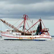 Florida ices shrimp rule