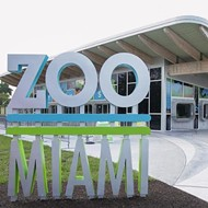 Zoo Miami becomes Florida's first Certified Autism Center zoo