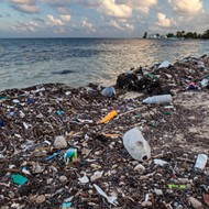 A new bill would give more power to Florida cities to ban single-use plastic