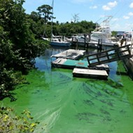 Florida AG Pam Bondi joins suit to keep EPA from enforcing rules to protect more waterways