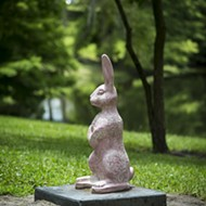 Best Pink Bunny