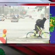 Tampa bicyclist braves flood and 'takes a header' on live TV