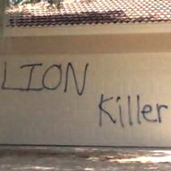 Florida vacation home of dentist who shot Cecil the Lion vandalized with spray paint and pigs feet
