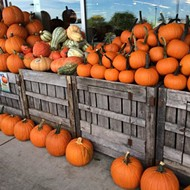 Pumpkin shortage in Illinois could surge prices in Florida
