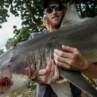 Florida angler bitten by shark claims he caught same shark and now plans to eat it