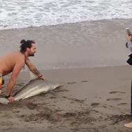 Watch this Florida manbun use a shark as a selfie prop
