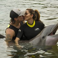 With arms wide open, Scott Stapp met this dolphin at SeaWorld today