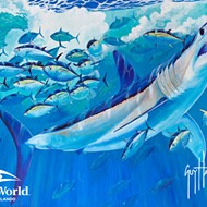 Watch marine artist Guy Harvey paint a new shark mural at SeaWorld