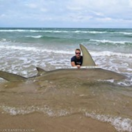 Man catches staggeringly big 13-foot-long hammerhead shark