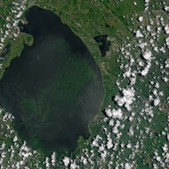 You can now see Florida's gross algae problem from space