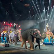 Ringling Bros. and Barnum & Bailey Circus will soon shut down