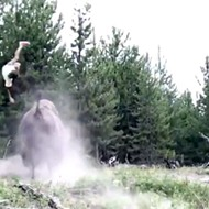 Florida girl tossed into the air by charging bison at Yellowstone