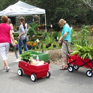 Leu Gardens cancels Orlando's most popular annual plant sale
