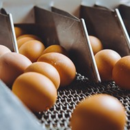 Fried ova-rules packing restrictions to move eggs faster