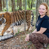 Florida's Big Cat CEO Carole Baskin will take over Joe Exotic's tiger zoo