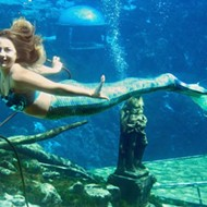 Weeki Wachee, Florida's mermaid city, officially dissolves