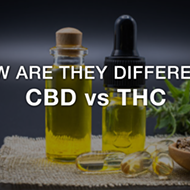How Are They Different : THC & CBD?