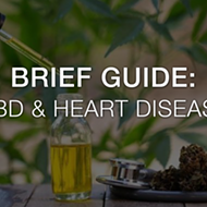 A Brief Guide on CBD & Heart Disease