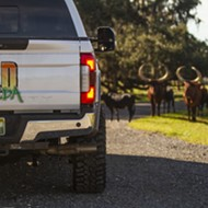 Osceola County's Wild Florida announces massive expansion, more than doubling in size