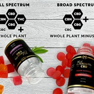 Best CBD Gummies 2021 Guide