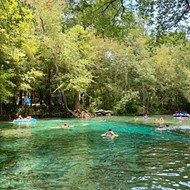 Florida judge rules that, yes, the Nestle corporation can continue to get water for bottling from Ginnie Springs