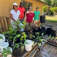 Universal Studios donates plants to Orlando urban gardening charity