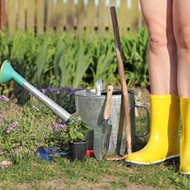 Orlando ranks as one of the best cities for naked gardening in the U.S.