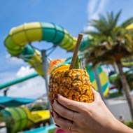 With a major new attraction likely in the works, Tampa's Adventure Island looks to move out of the shadow of other Florida water parks