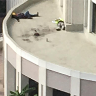 Two sleepy guys are taking a nap on the roof of Orlando City Hall right now