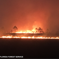Military exercise sparks 8,000-acre wildfire at Florida Air Force range