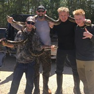 Here's a photo of Gordon Ramsay posing with Florida pythons, which he then cooked and ate