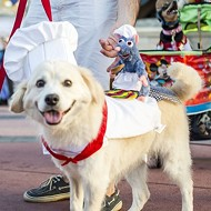 You can now bring your dog to Walt Disney World Resort hotels