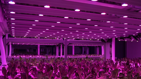 Linear GreenPower LED light modules - ECO CONVERGENCE GROUP