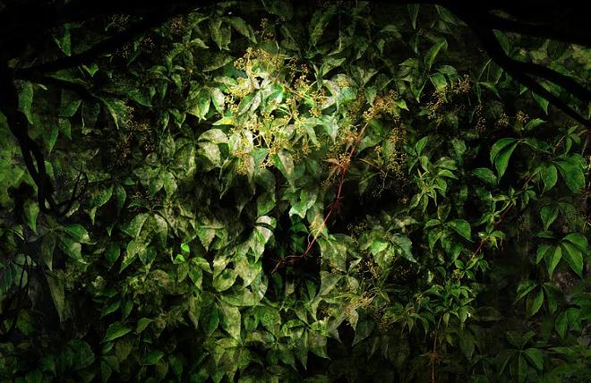 Seeds of Extinction at HHN 2018 - PHOTO VIA UNIVERSAL