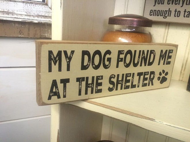 1000w_dog_sign.jpg