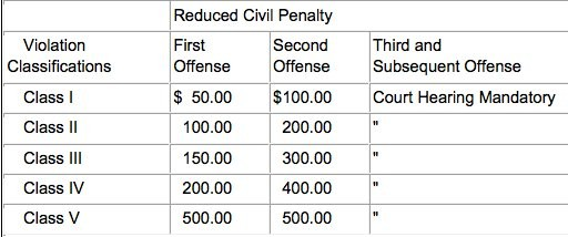 SCREENCAP OF ORLANDO'S PROPOSED CIVIL PENALTIES VIA CITY OF ORLANDO