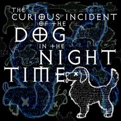 thecuriousincidentofthedoginthenight-time_1200x1200.png