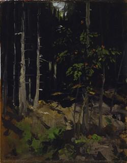 'Mountain Ash, Dark Woods' (1911), painting by Robert Henri - IMAGE COURTESY CFAM