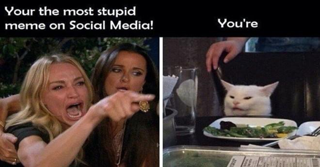 memes_woman_yelling_at_cat.jpg