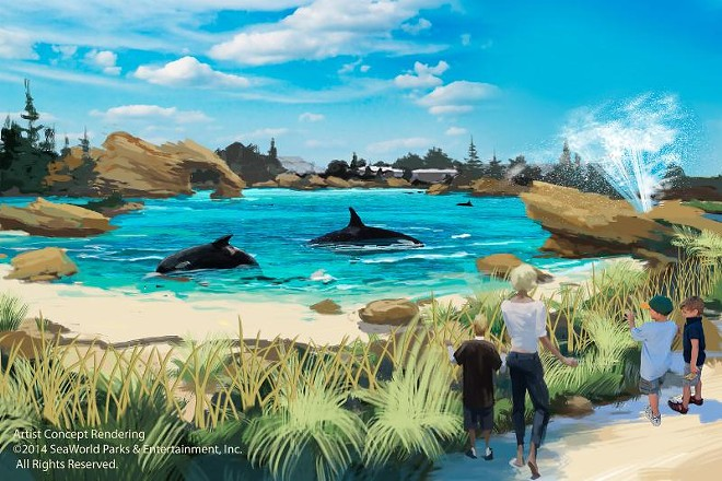 An artist's rendering of the canceled Blue World orca habitat at SeaWorld - IMAGE VIA SEAWORLD