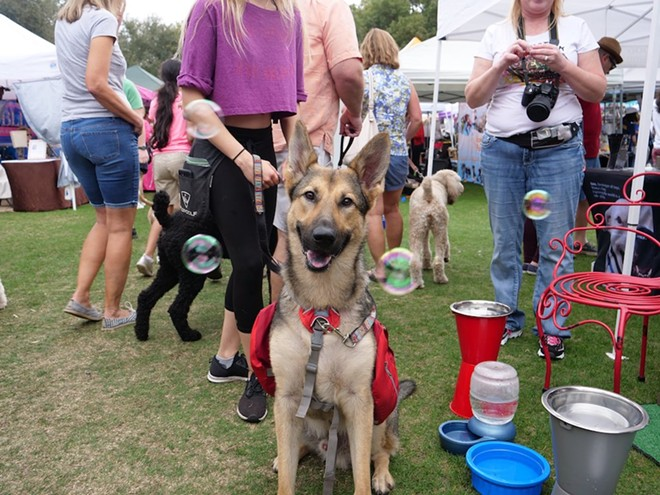 PHOTO COURTESY PAWS IN THE PARK