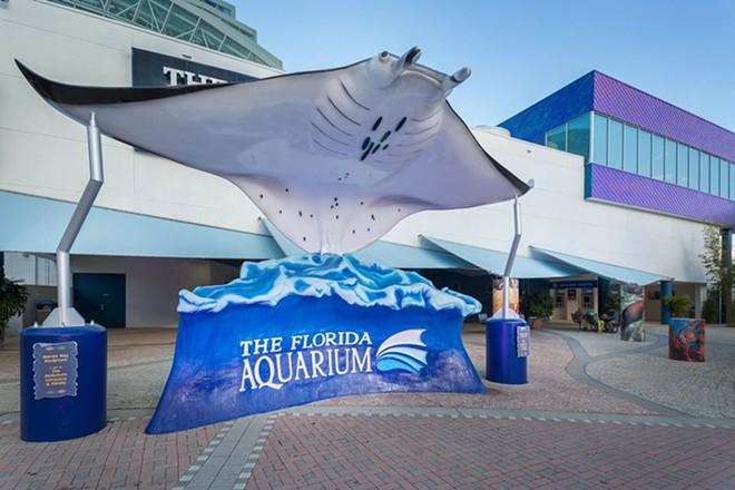 IMAGE VIA FLORIDA AQUARIUM/FACEBOOK
