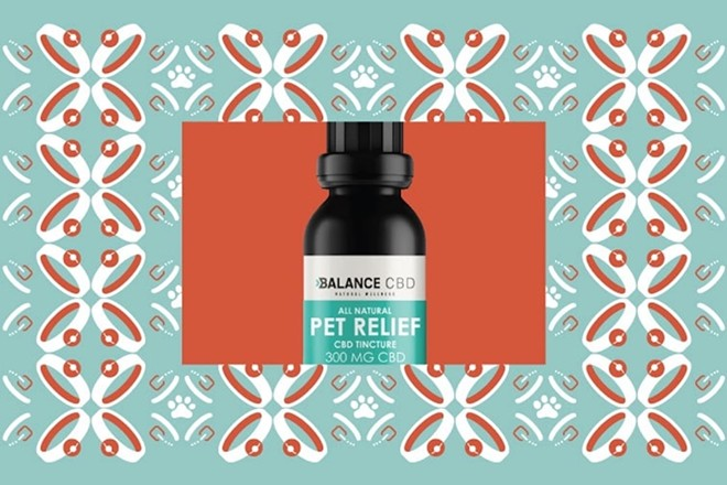 The 5 Best CBD Oils for Dogs (Review ...dogsrecommend.com
