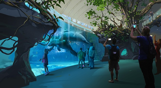 Concept art of the new manatee exhibit proposed for the Clearwater Marine Aquarium - IMAGE VIA THE CLEARWATER MARINE AQUARIUM