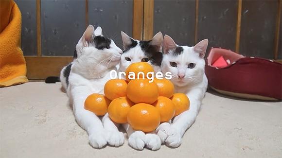 Still from 'Surface Image: Prologue: Oranges 2015' - DOMINGO CASTILLO