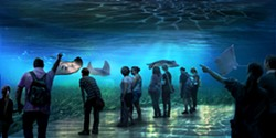 IMAGE VIA NATIONAL GEOGRAPHIC ENCOUNTER: OCEAN ODYSSEY
