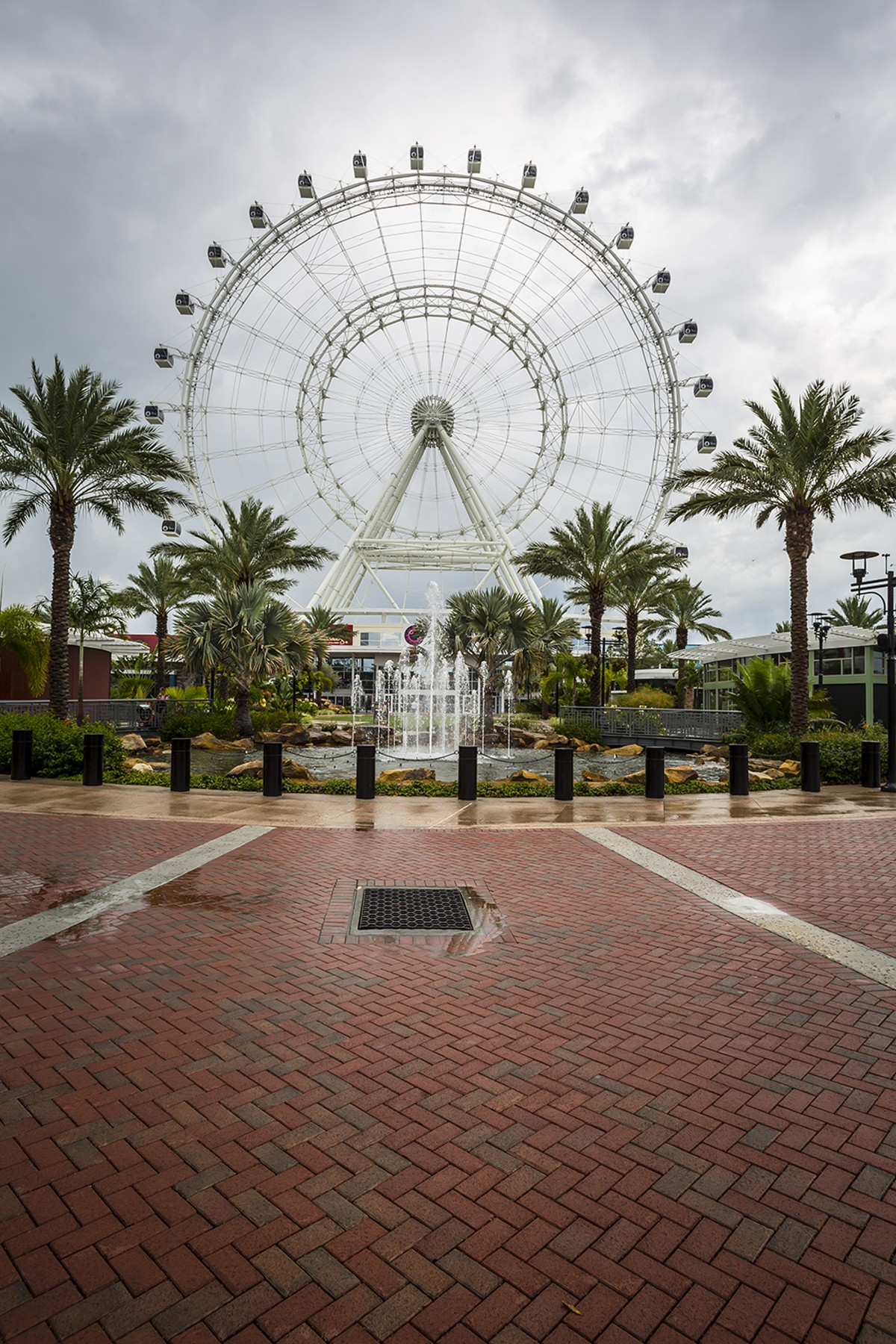 1000w_bartlettimage-orlando_eye-7923.jpg