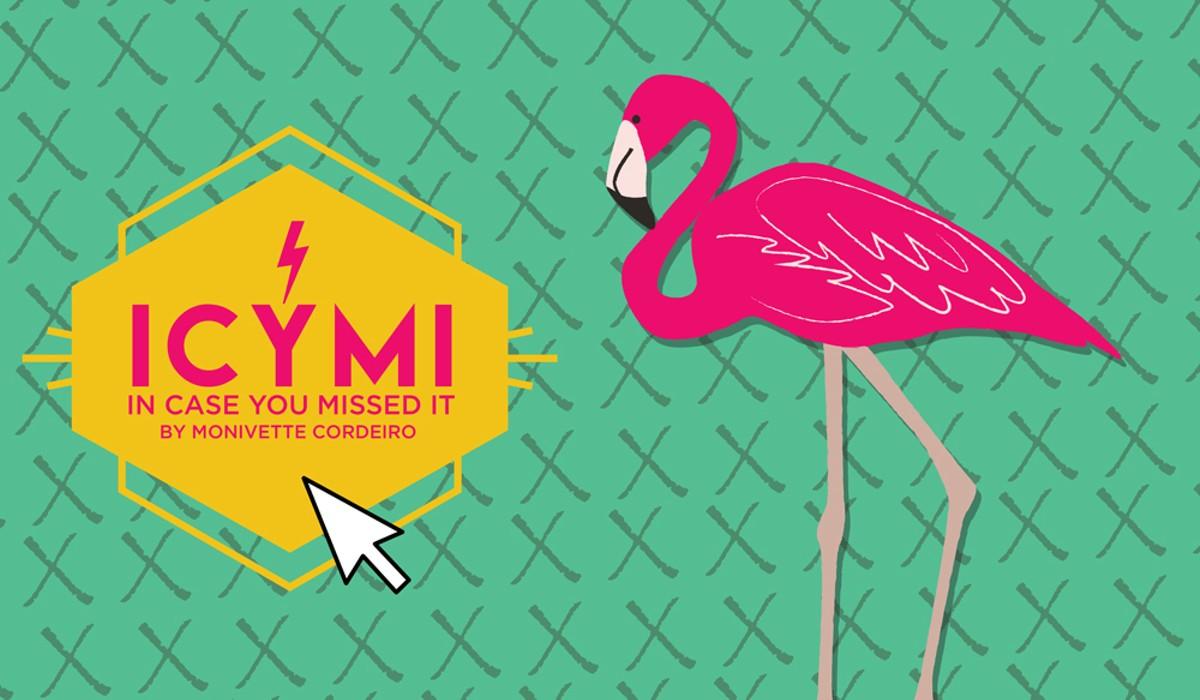 icymi_flamingo_0810.jpg